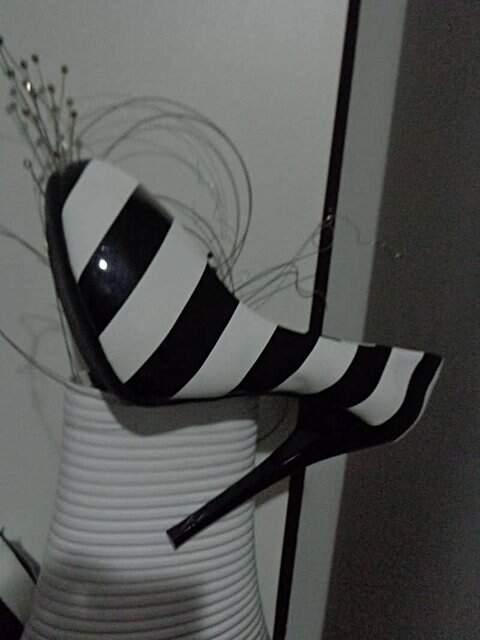 Zebra Linda De Ver_foto da etiqueta